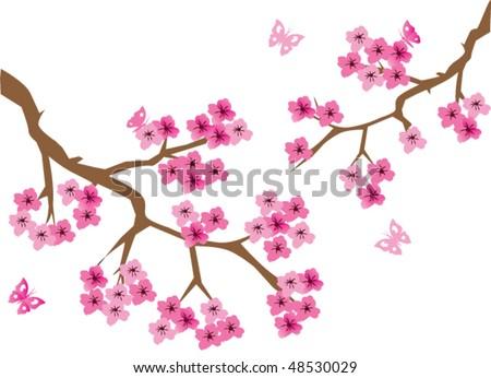 vector cherry blossom - stock vector
