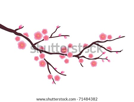 Vector Cherry blossom in spring time - stock vector