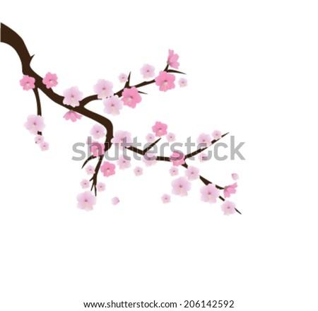 vector cherry blossom tree branch - stock vector