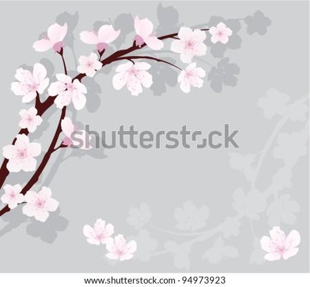 vector cherry branch - stock vector