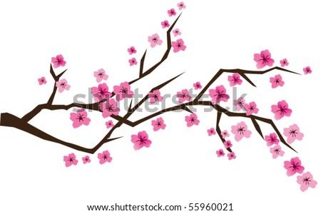 vector cherry branch in blossom - stock vector