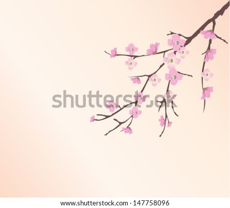 vector cherry tree branch in blossom