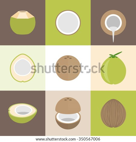 Vector coconut icons set, flat design