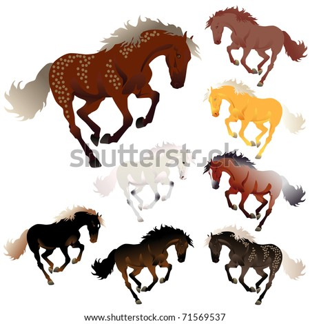 vector collection different colors horses stock vector royalty free