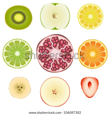 Vector collection of fresh fruit slices - Set 1 - stock vector