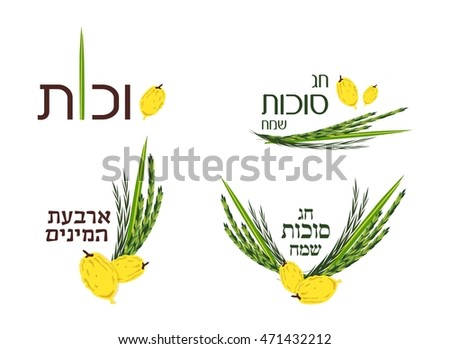 Vector collection of labels and elements for Sukkot (Jewish Traditional Holiday). Icons and badges with signature Happy Sukkot, happy holiday and four  species in Hebrew.