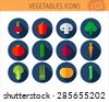 Vector collection of vegetables flat icons: radish, pepper, mushroom, broccoli, tomato, cucumber, red beet, carrot, salad,asparagus, pumpkin and pea.  - stock vector