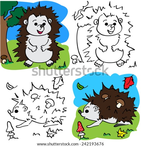 Vector color hedgehog and coloring book - stock vector