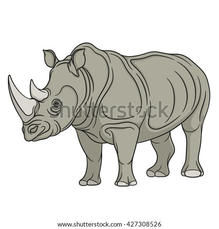Vector color illustration rhinoceros. Isolated object on a white background.
