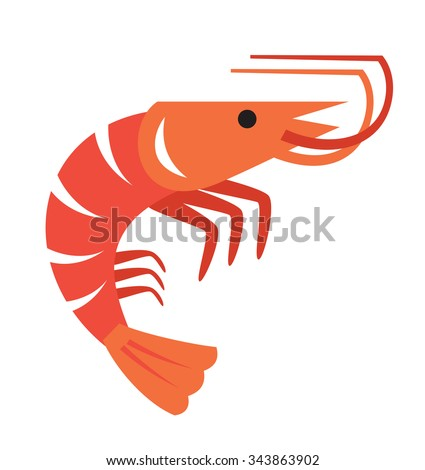 vector color prawn icon on white background - stock vector