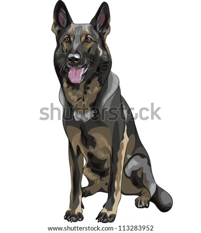vector color sketch black dog German shepherd breed sitting and smile