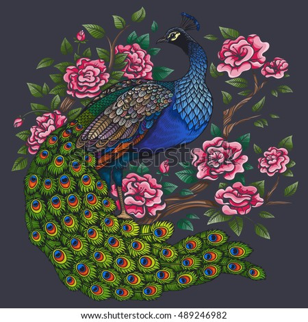 Vector Color Vintage Peacock Roses Illustration