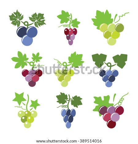 vector colorful icons of grapes - stock vector