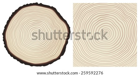 Vector colour saw cut pine tree trunk and tree rings background - stock vector