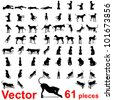 Vector concept or conceptual set,group or collection of black dog silhouette isolated on white background,for animal,domestic,mammal,canine,drawing,cute,playful,hound,play,sketch,humor or breed design - stock vector