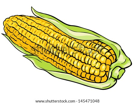 vector corn on cob stock vector 145471048 shutterstock rh shutterstock com corn on the cob clipart black and white corn on the cob clipart black and white