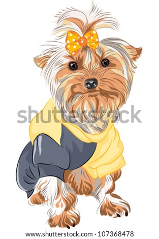 vector cute puppy dog Yorkshire terrier breed sitting