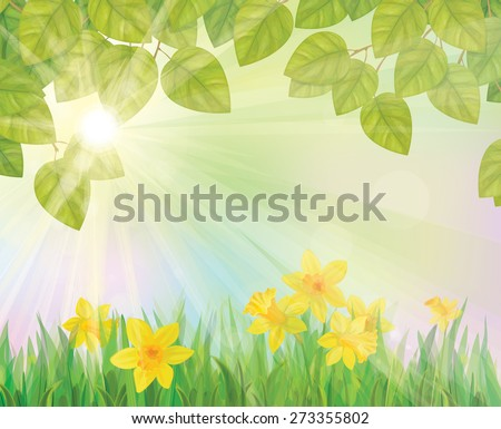 Vector daffodil flowers and leaves border on sunny  background. - stock vector