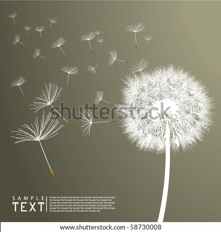 Vector Dandelion - stock vector