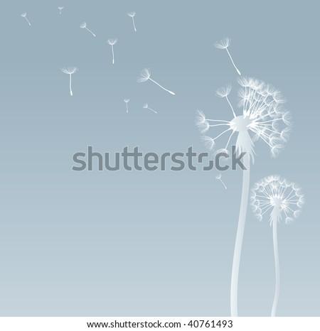 vector dandelion background - stock vector