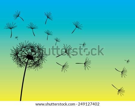 Vector dandelion blue yellow background. - stock vector
