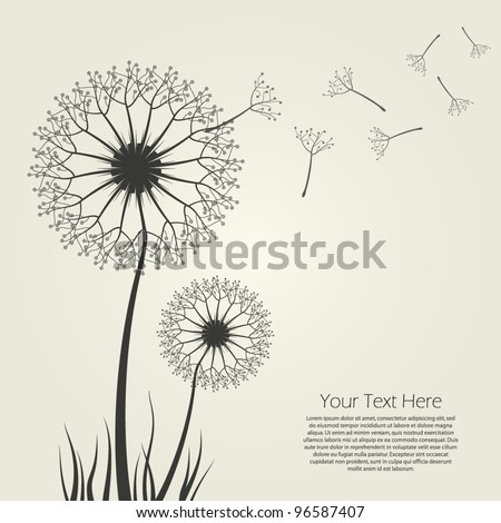Vector Dandelion - EPS10 - stock vector