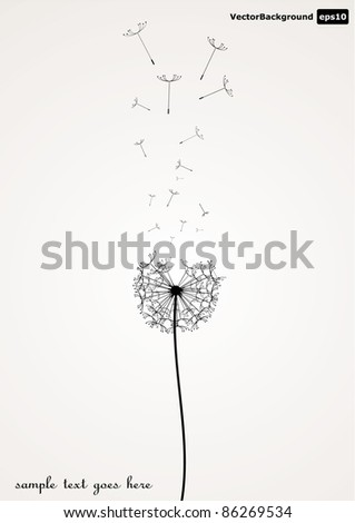Vector dandelion illustration eps 10 - stock vector