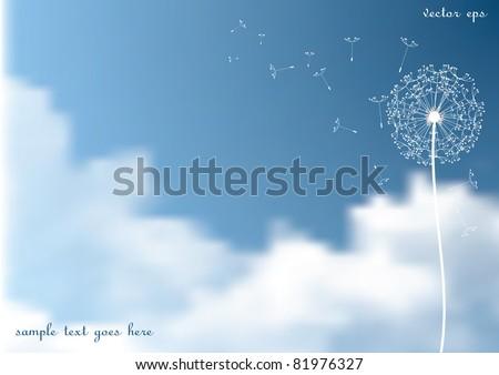 vector dandelion with flying seeds on  sky - stock vector