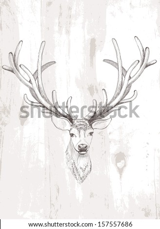 Vector deer. - stock vector