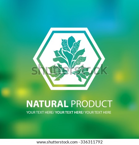 Vector design elements for organic natural logo. Can be used for cosmetics. - stock vector