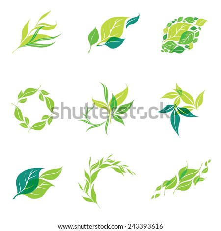 Vector design elements for organic natural logos - stock vector