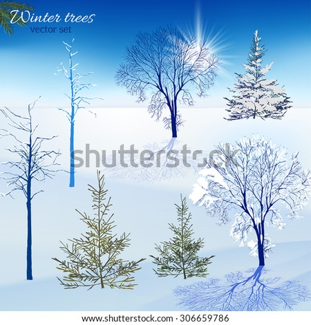 Vector designers set of beautiful winter trees. Useful for making postcards, Christmas invitations, posters and other Xmas, New Year and winter designs. - stock vector
