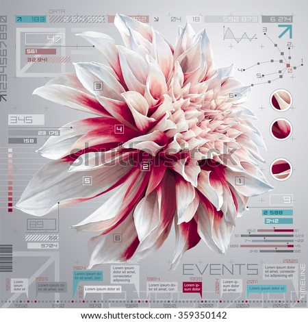 Vector digital computer screen with dahlia flower, infographic set and timeline report template - stock vector