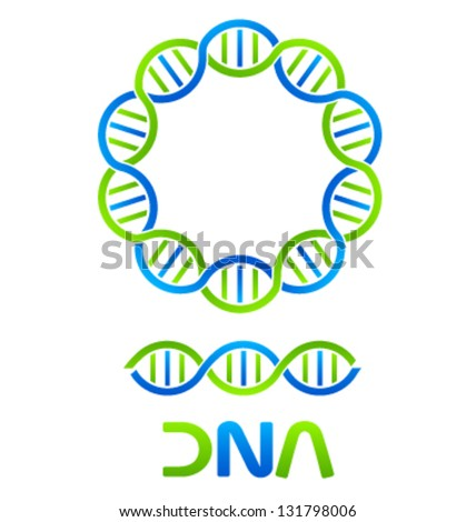 Vector DNA Strand and Seamless - stock vector