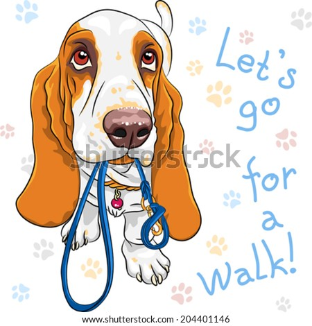 Vector dog Basset Hound breed wants to walk with a leash in mouth - stock vector