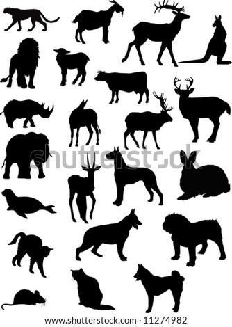 vector domestic and wild animal shapes
