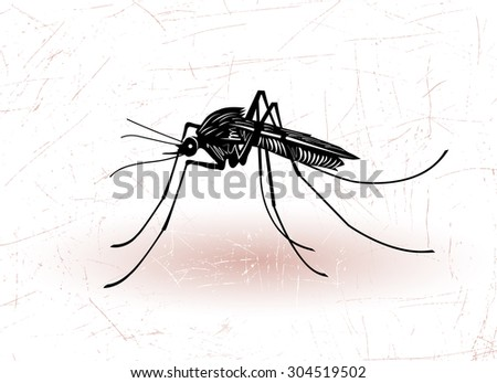 Vector drawing of big mosquito on skin. - stock vector