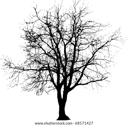 vector drawing of the big naked winter tree - stock vector