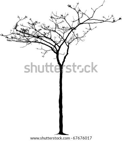 vector drawing of the small naked winter tree - stock vector