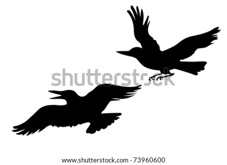 vector drawing two ravens on white background - stock vector