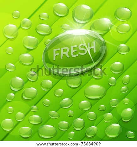 Vector drops of dew on a green background - stock vector