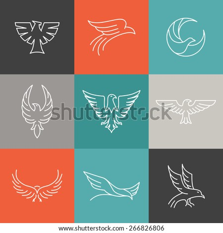 Vector eagle and falcon linear logo design templates - set of mono line icons - stock vector