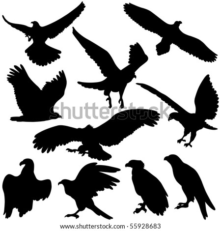 Vector Eagle silhouettes.