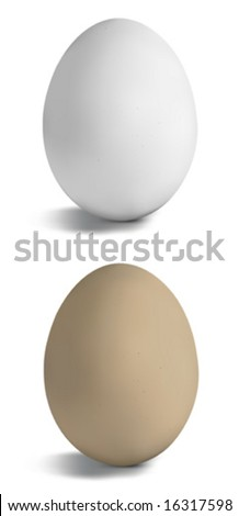 Vector eggs on white - stock vector