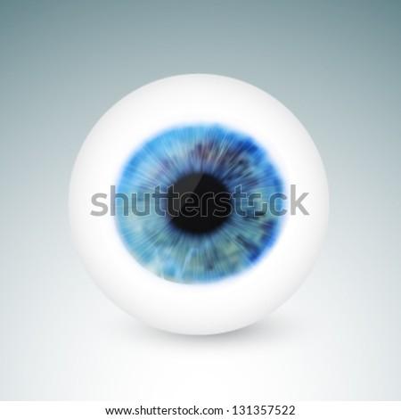 vector eyeball illustration - stock vector