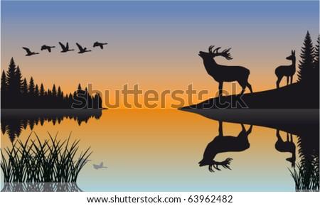 vector family of deer in lake - stock vector