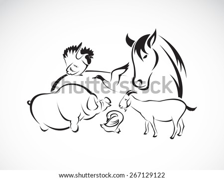 Vector farm animal set on white background, horse,pig,chicken,donkey,duck,goose - stock vector