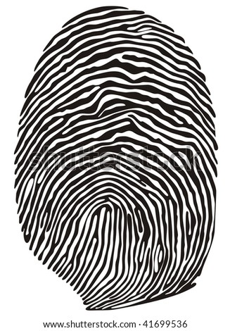 Vector finger print - stock vector