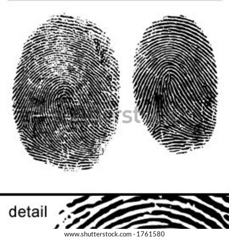 Vector fingerprints maintaining natural faultlines and inconsistencies.