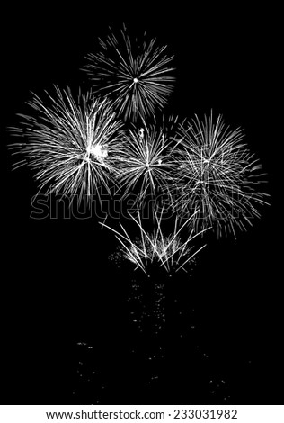 Vector Fireworks with reflection on lake